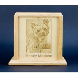 Monument Urn with Custom Engraved Photo